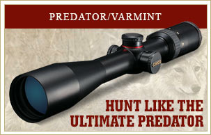 Hunt like the ultimate predator